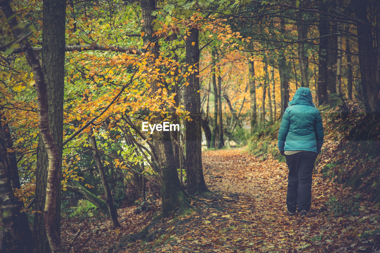 Rear View Of Woman Walking In Forest During Autumn