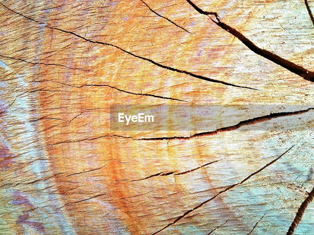 full frame, backgrounds, textured, wood - material, pattern, no people, close-up, day, rough, tree, plant, brown, cracked, outdoors, nature, natural pattern, bark, wood, weathered, plank, textured effect, wood grain