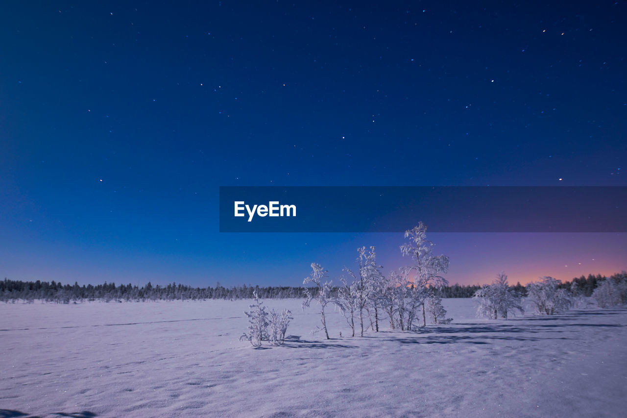 snow, winter, cold temperature, nature, tranquility, beauty in nature, tranquil scene, weather, scenics, landscape, field, tree, cold, frozen, blue, outdoors, night, white color, no people, sky, star - space, clear sky, snowing, astronomy