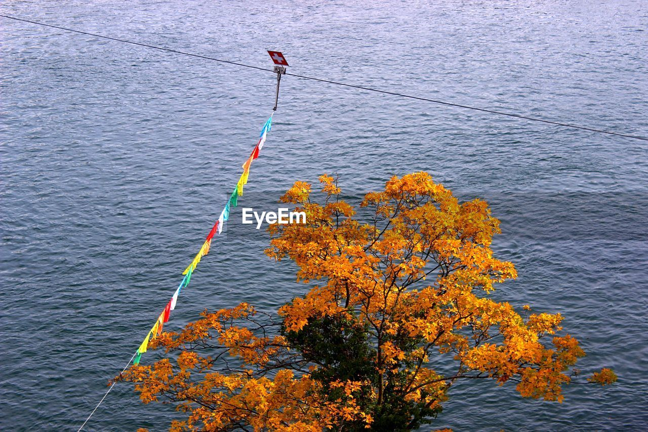 High angle view of swiss flag on autumn tree against sea