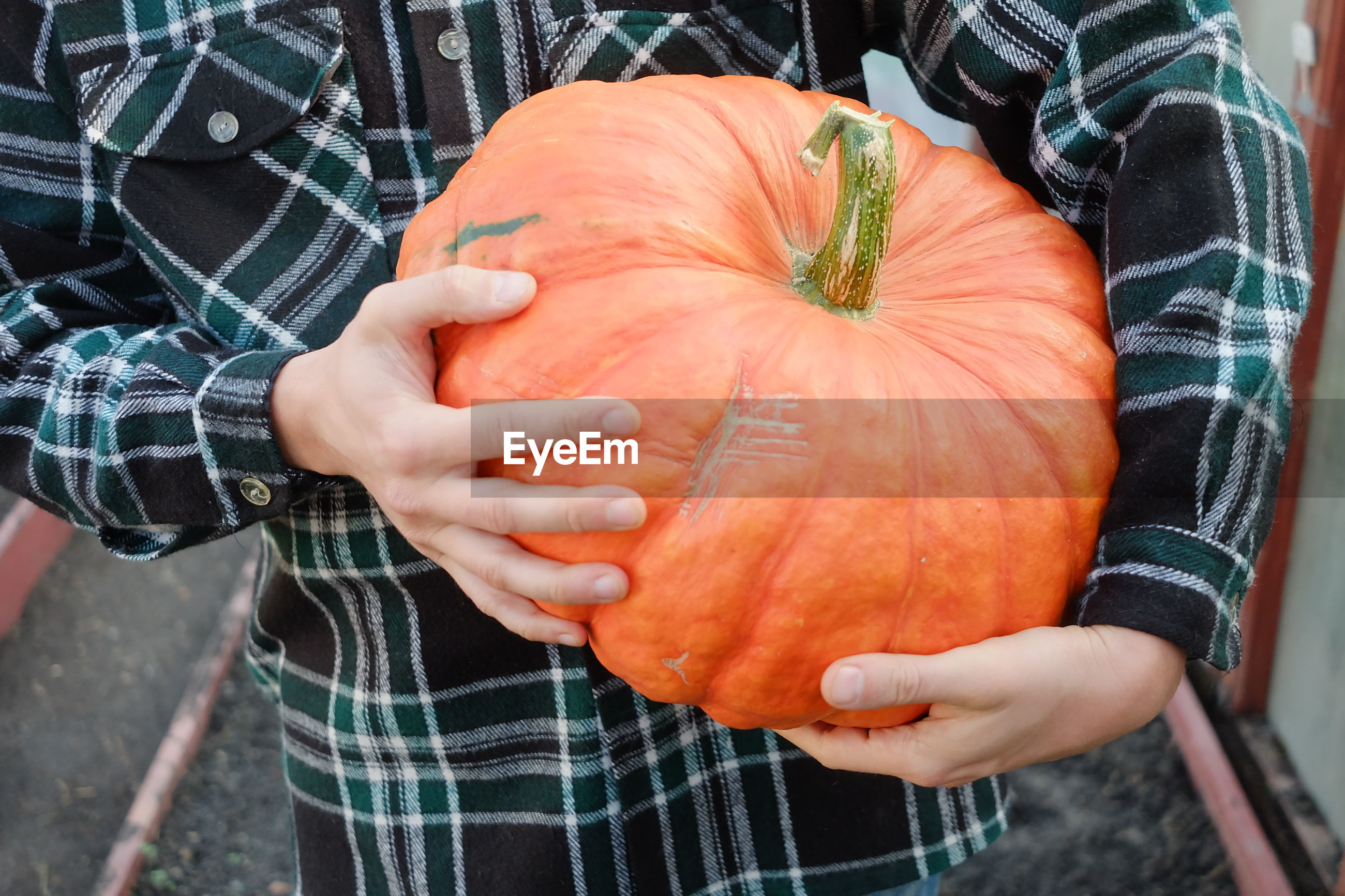 Midsection of man holding pumpkin