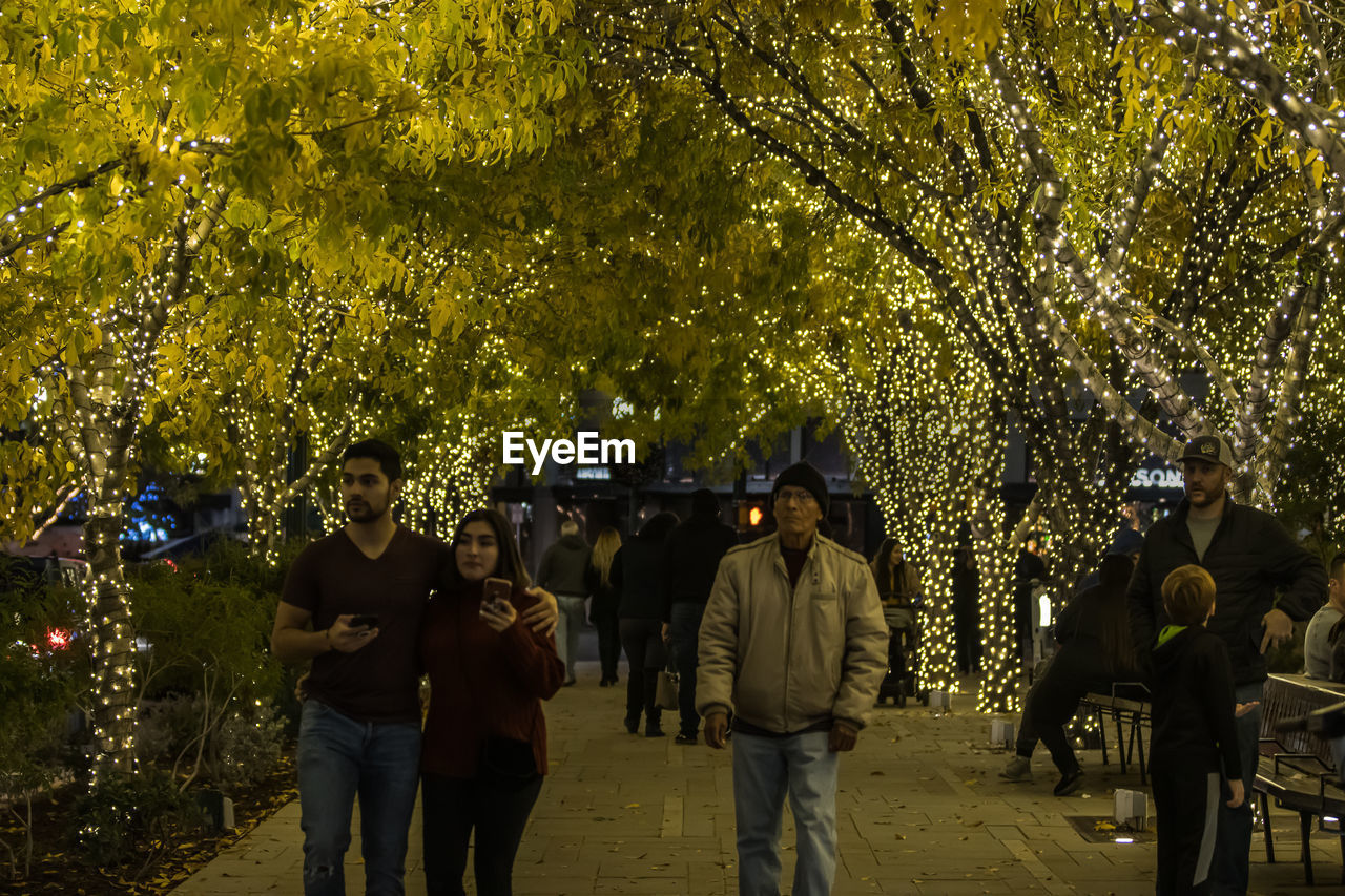 tree, real people, plant, group of people, lifestyles, men, leisure activity, togetherness, women, people, nature, adult, casual clothing, three quarter length, walking, illuminated, outdoors, street, night, celebration