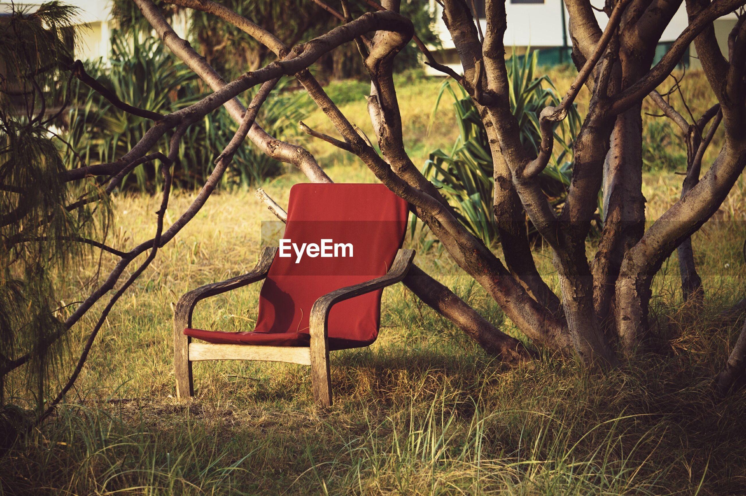 Empty red chair in backyard