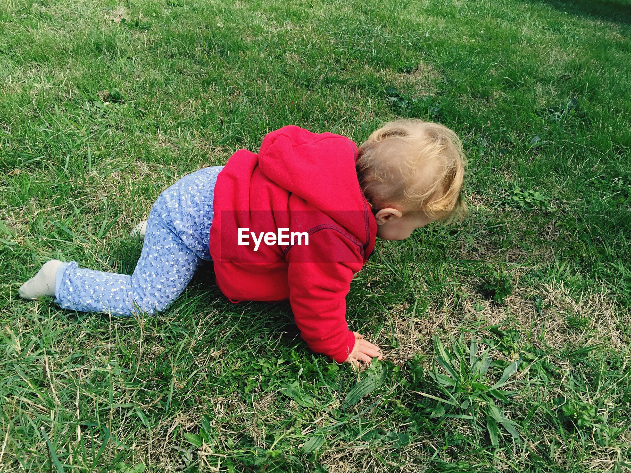 High angle view of baby crawling on grass at park