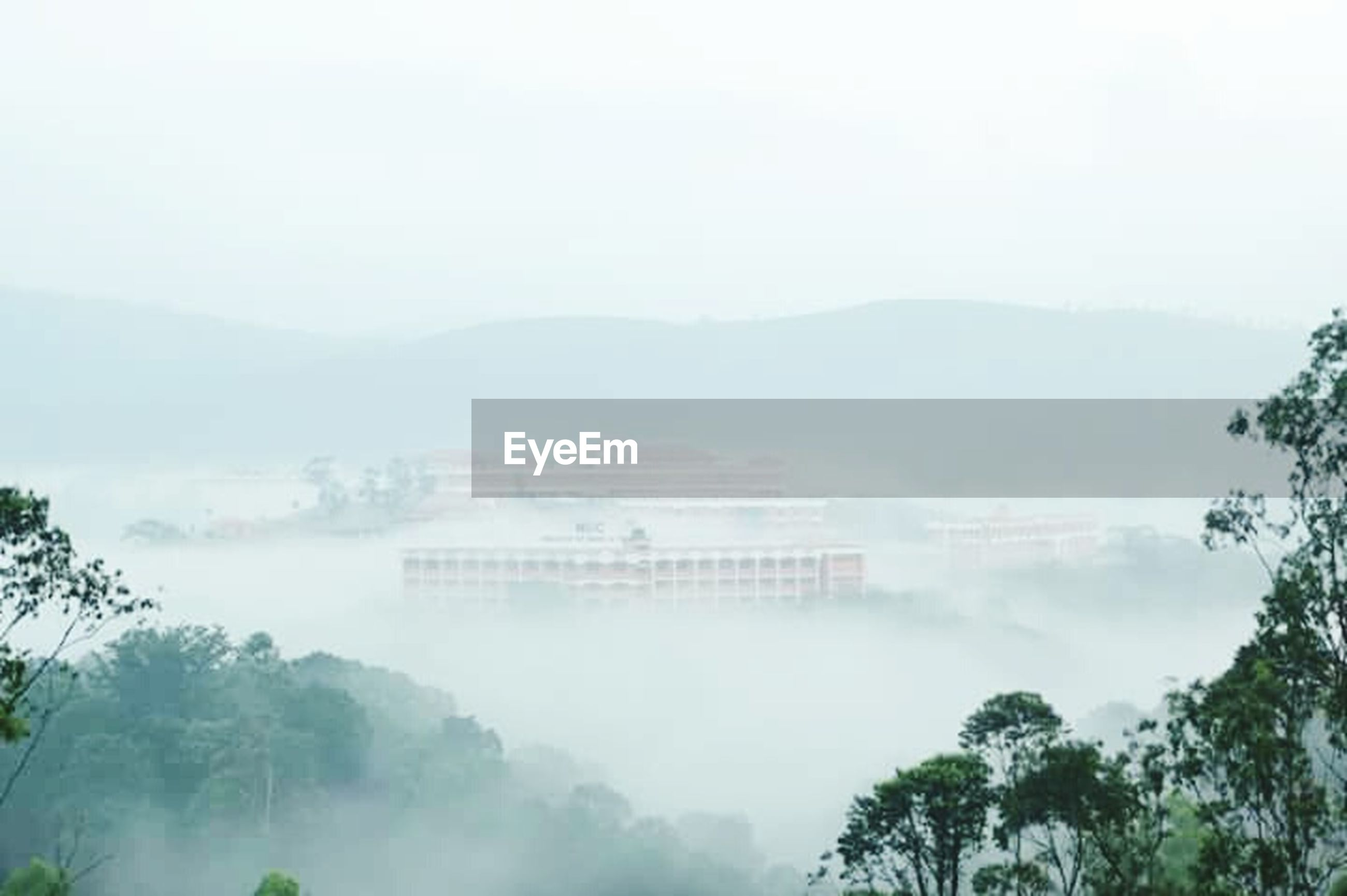 architecture, built structure, tree, building exterior, fog, foggy, mountain, city, sky, high angle view, weather, copy space, nature, day, cityscape, growth, outdoors, no people, travel destinations