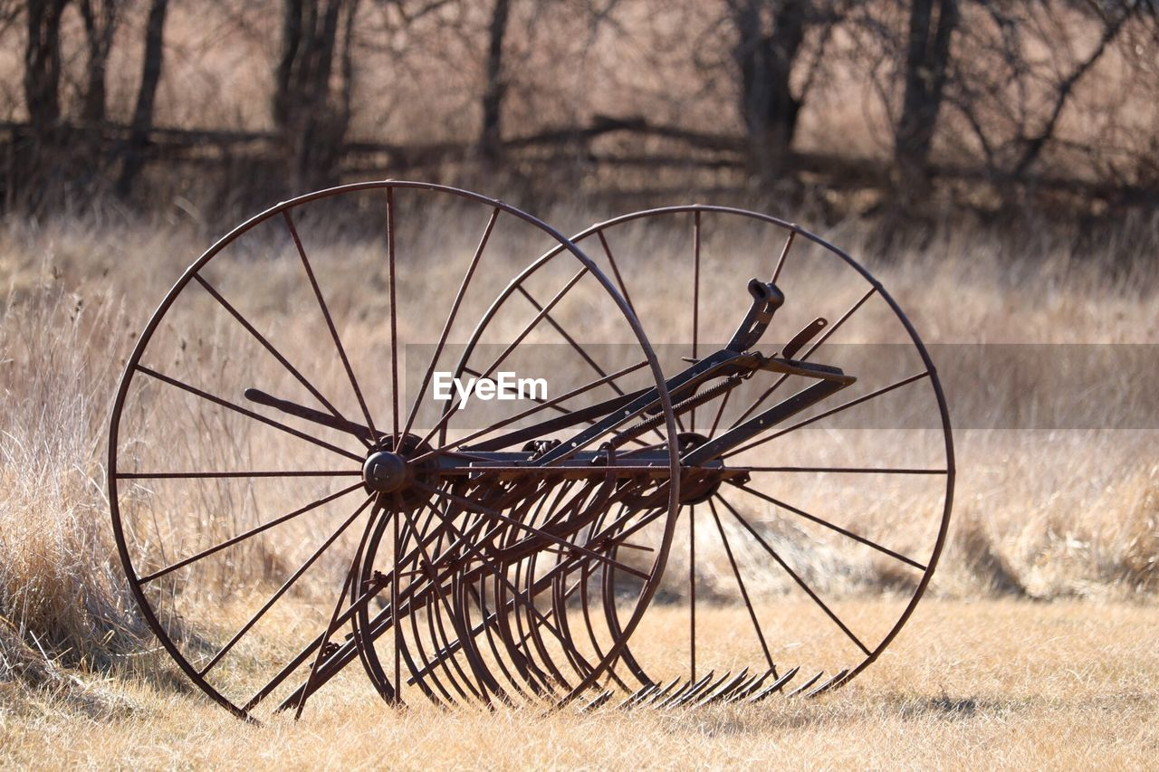 wheel, tree, nature, no people, wood - material, field, day, land, outdoors, plant, focus on foreground, grass, transportation, shape, landscape, abandoned, geometric shape, wagon wheel, bare tree