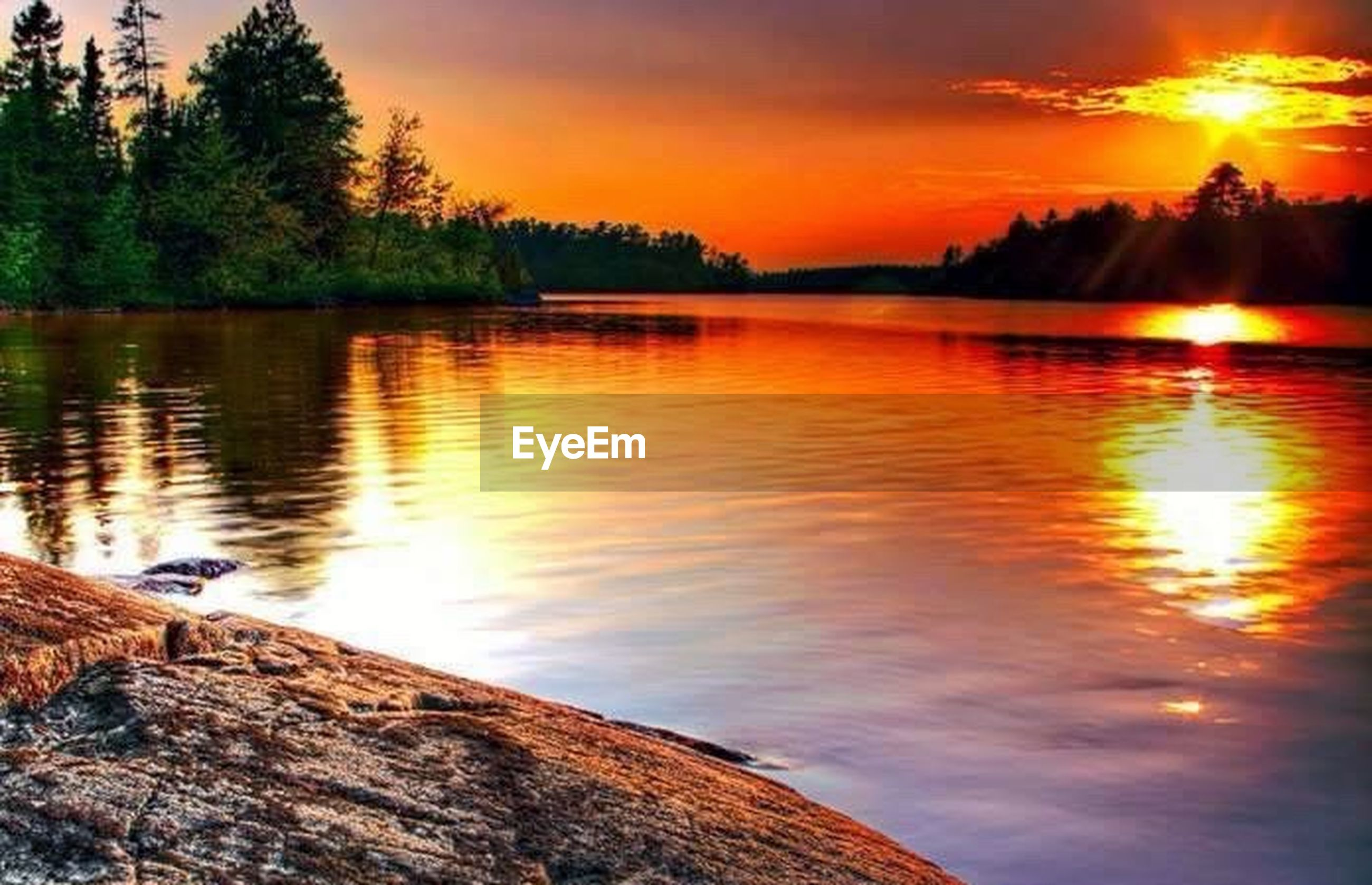 sunset, reflection, tree, lake, nature, scenics, water, tranquil scene, beauty in nature, outdoors, cloud - sky, sky, tranquility, travel destinations, no people, day, animal themes