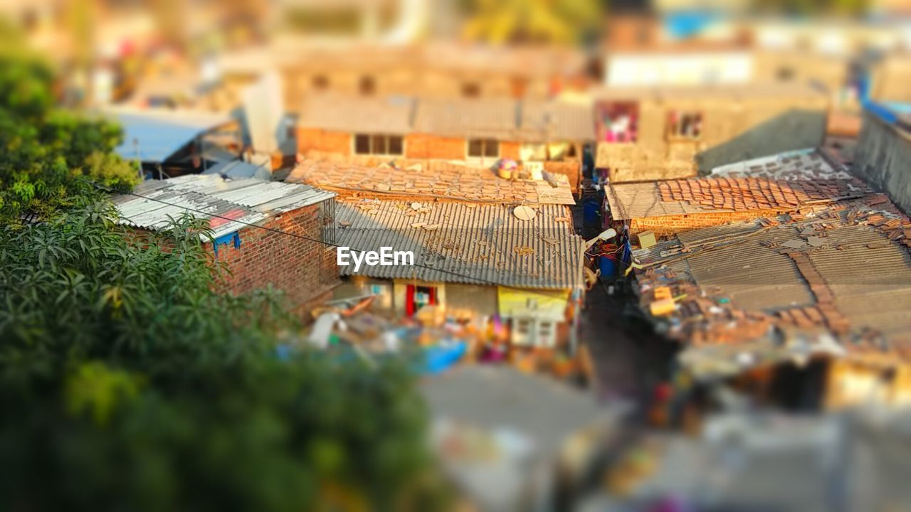 selective focus, tilt-shift, high angle view, architecture, outdoors, built structure, day, city, building exterior, leaf, no people, close-up
