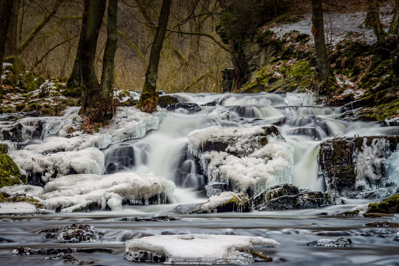 motion, water, long exposure, forest, flowing water, beauty in nature, tree, waterfall, scenics - nature, blurred motion, land, no people, flowing, rock, nature, plant, solid, rock - object, day, outdoors, power in nature, stream - flowing water, rainforest, falling water