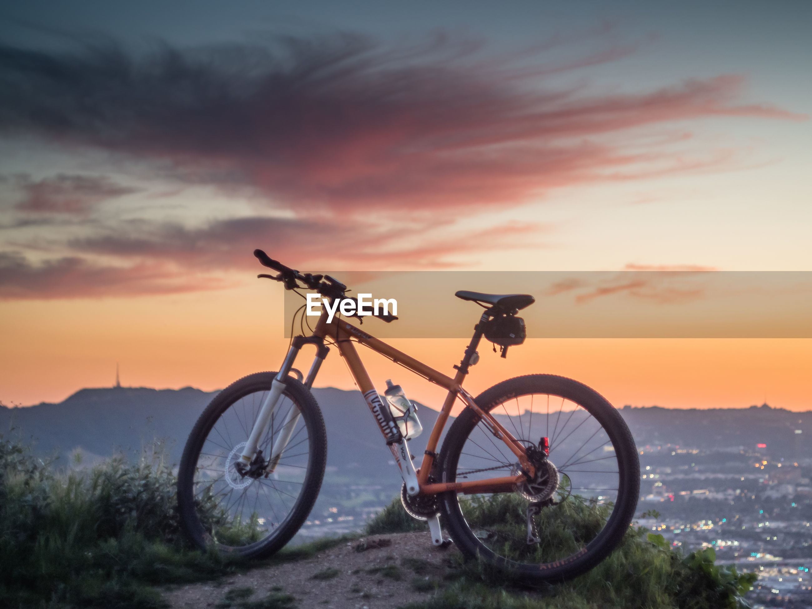 BICYCLE AGAINST TREES DURING SUNSET