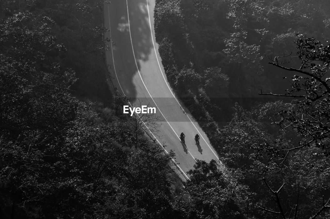 High Angle View Of Road In Forest