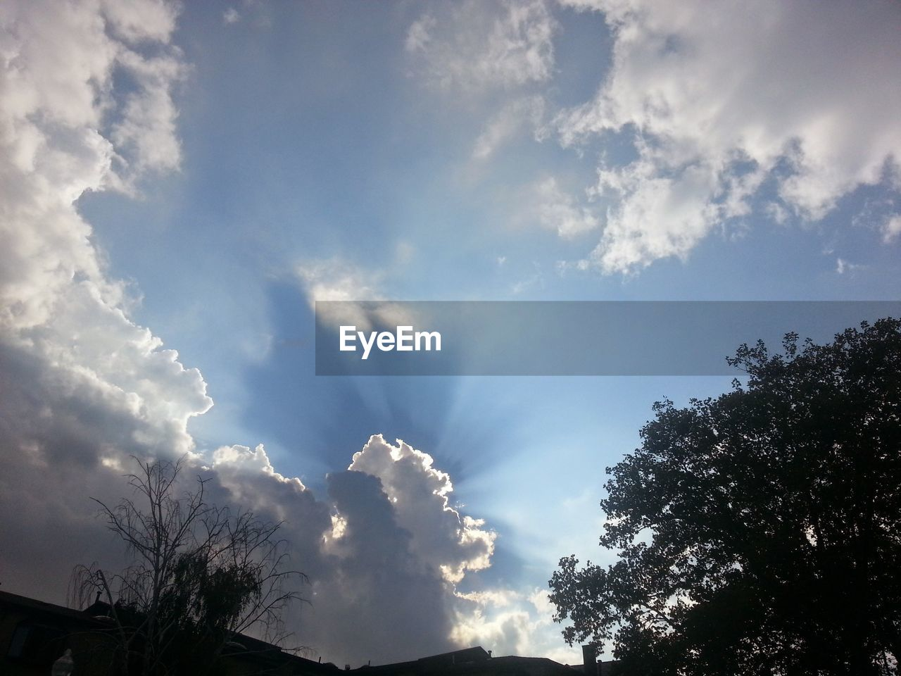 sky, low angle view, tree, beauty in nature, nature, no people, cloud - sky, day, tranquility, outdoors, scenics