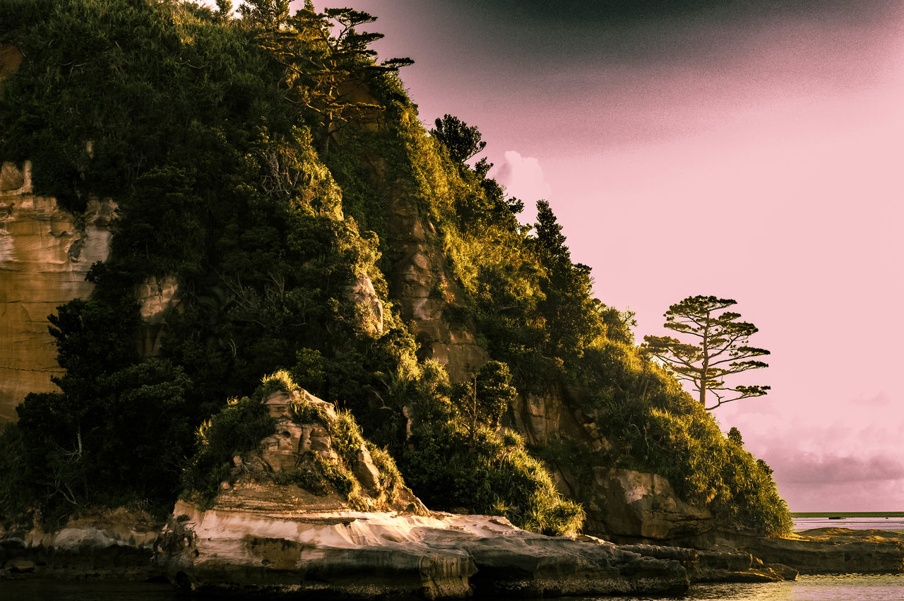 tree, nature, beauty in nature, no people, tranquil scene, sky, scenics, sunset, outdoors, tranquility, growth, cliff, day, landscape, water, mountain