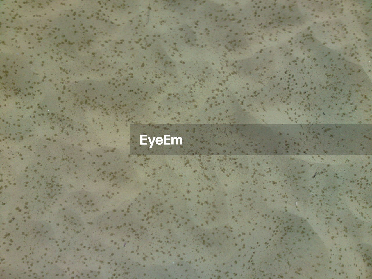 High angle view of raindrops on sand at beach