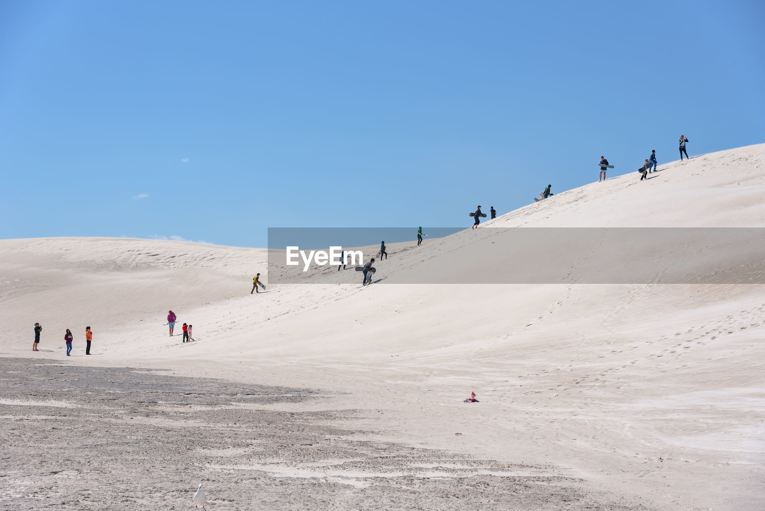 People on sand dune at beach against blue sky