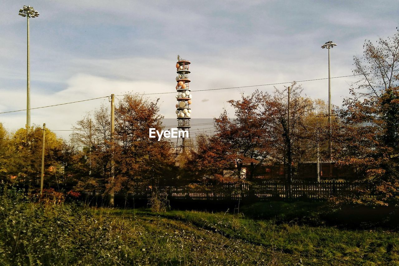 tree, architecture, no people, growth, nature, day, built structure, sky, electricity pylon, plant, outdoors, electricity, beauty in nature