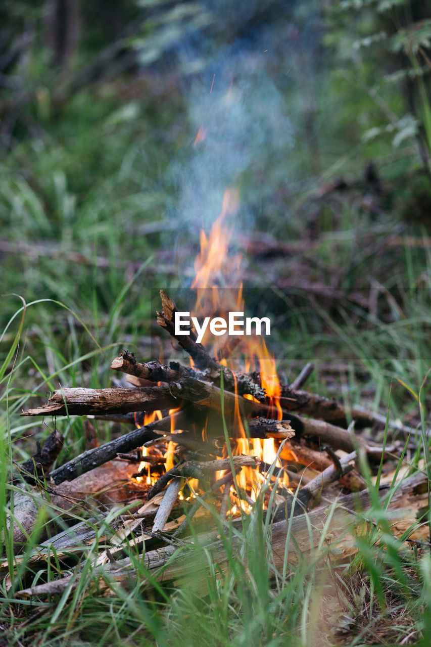 burning, fire, flame, fire - natural phenomenon, heat - temperature, nature, bonfire, log, land, no people, wood, grass, wood - material, motion, outdoors, field, firewood, day, smoke - physical structure, environment, campfire
