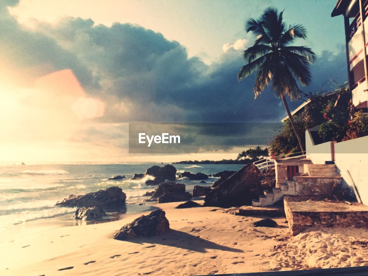 sea, beach, sky, scenics, horizon over water, sand, nature, beauty in nature, tranquil scene, tranquility, no people, outdoors, day, cloud - sky, palm tree, tree, water, vacations, wave