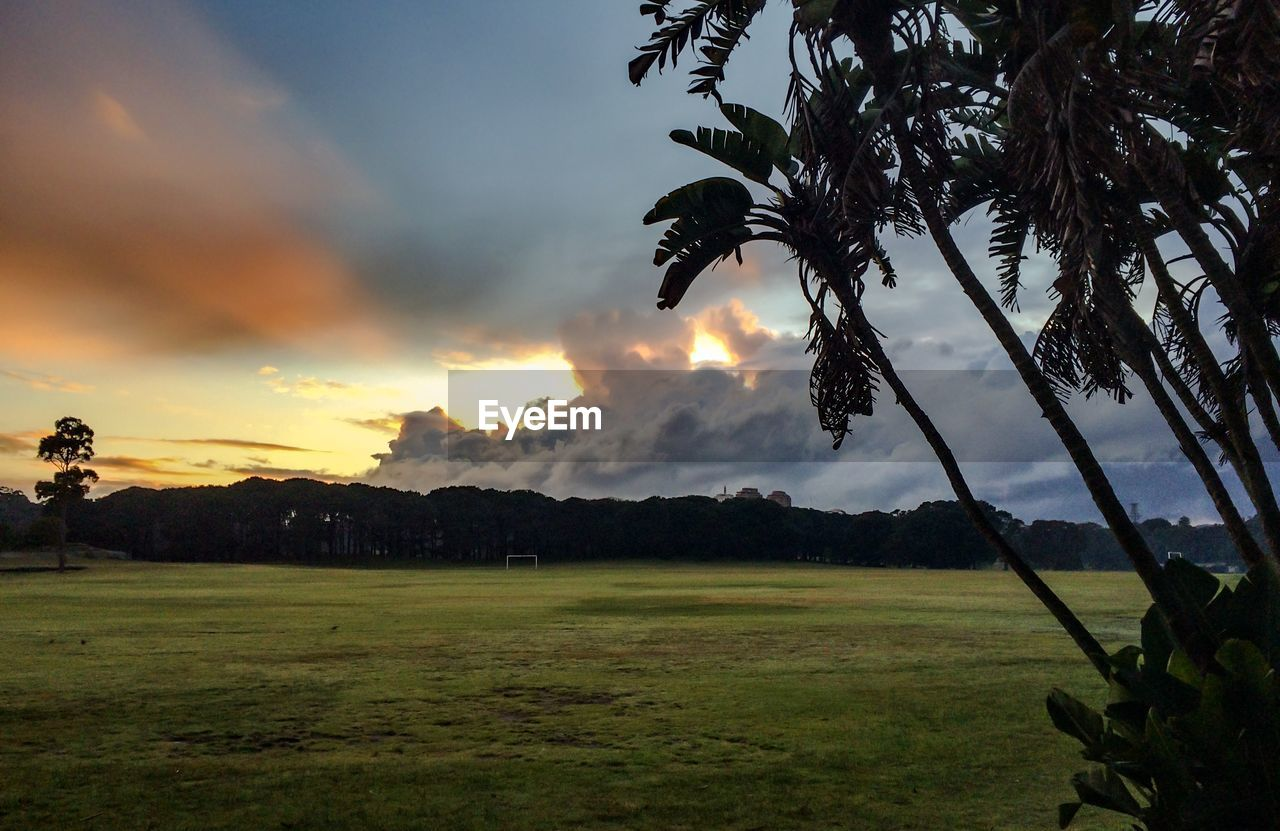 Scenic view of park against cloudy sky at sunset