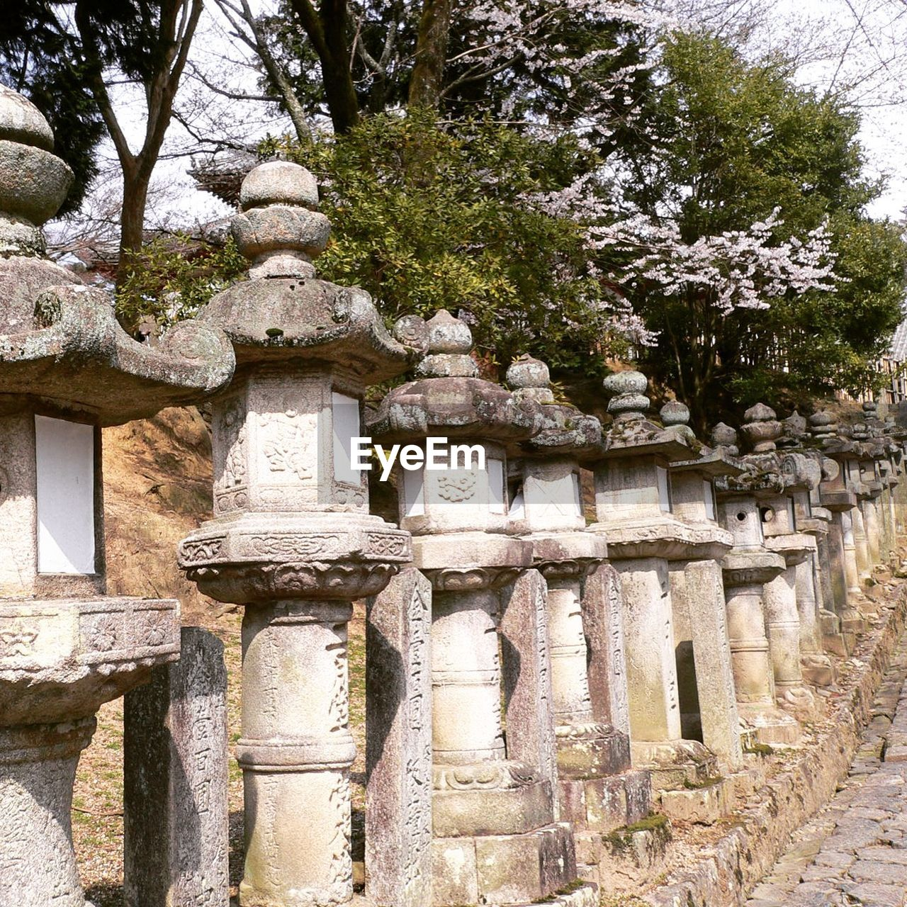 stone material, ancient civilization, travel destinations, old ruin, architecture, tourism, travel, built structure, ancient, history, architectural column, tree, religion, day, vacations, no people, outdoors, building exterior, nature
