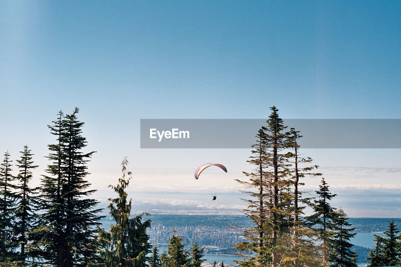 tree, nature, tranquility, day, extreme sports, outdoors, beauty in nature, parachute, adventure, clear sky, sky, scenery, no people, paragliding