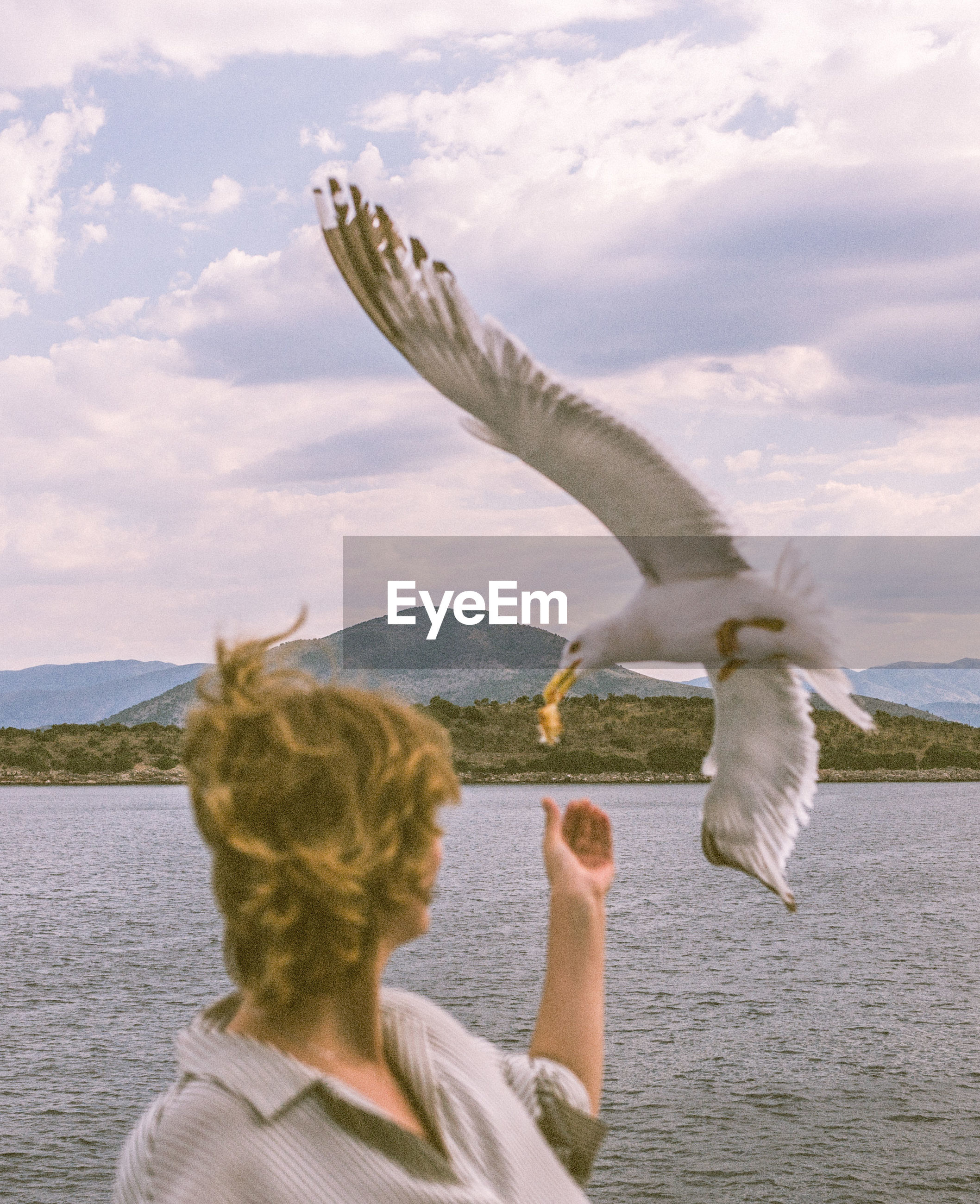 REAR VIEW OF WOMAN WITH SEAGULL FLYING OVER SEA AGAINST SKY