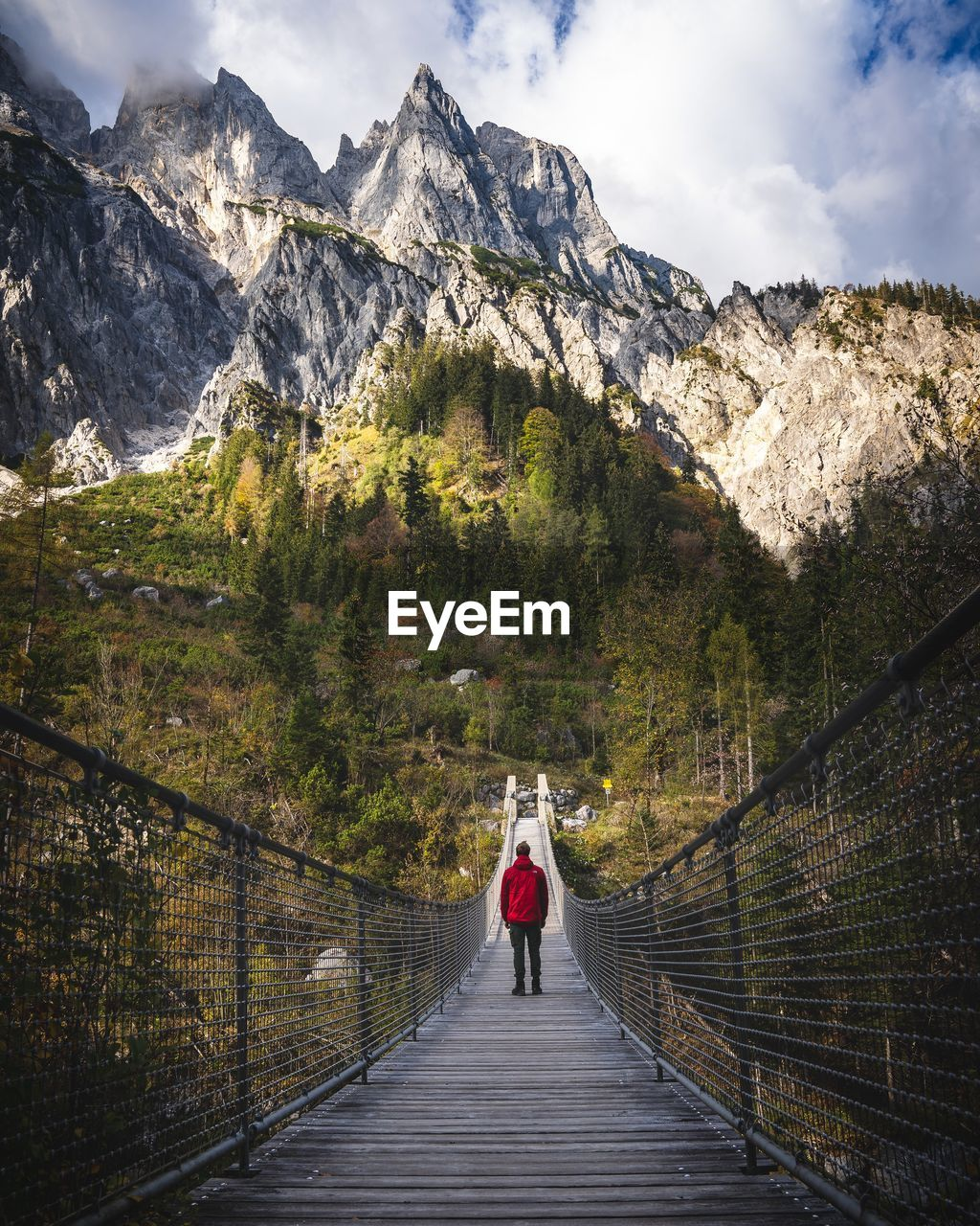 Rear view of person standing on footbridge against mountains