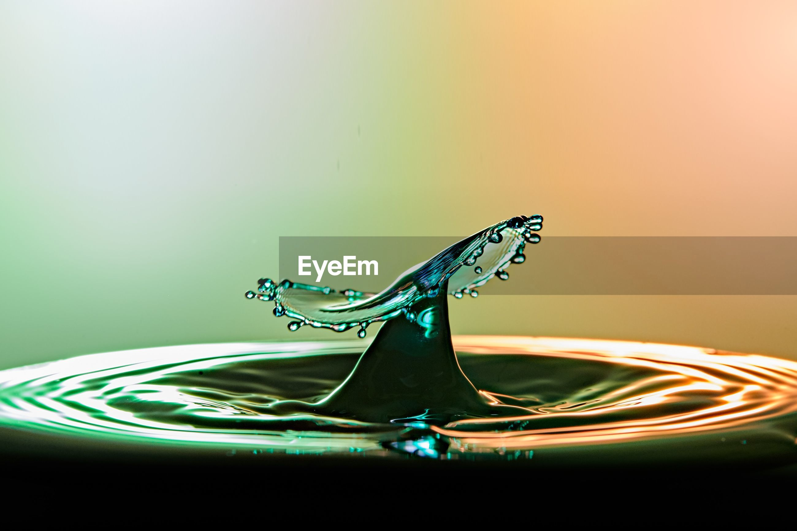 Close-up of splashed water