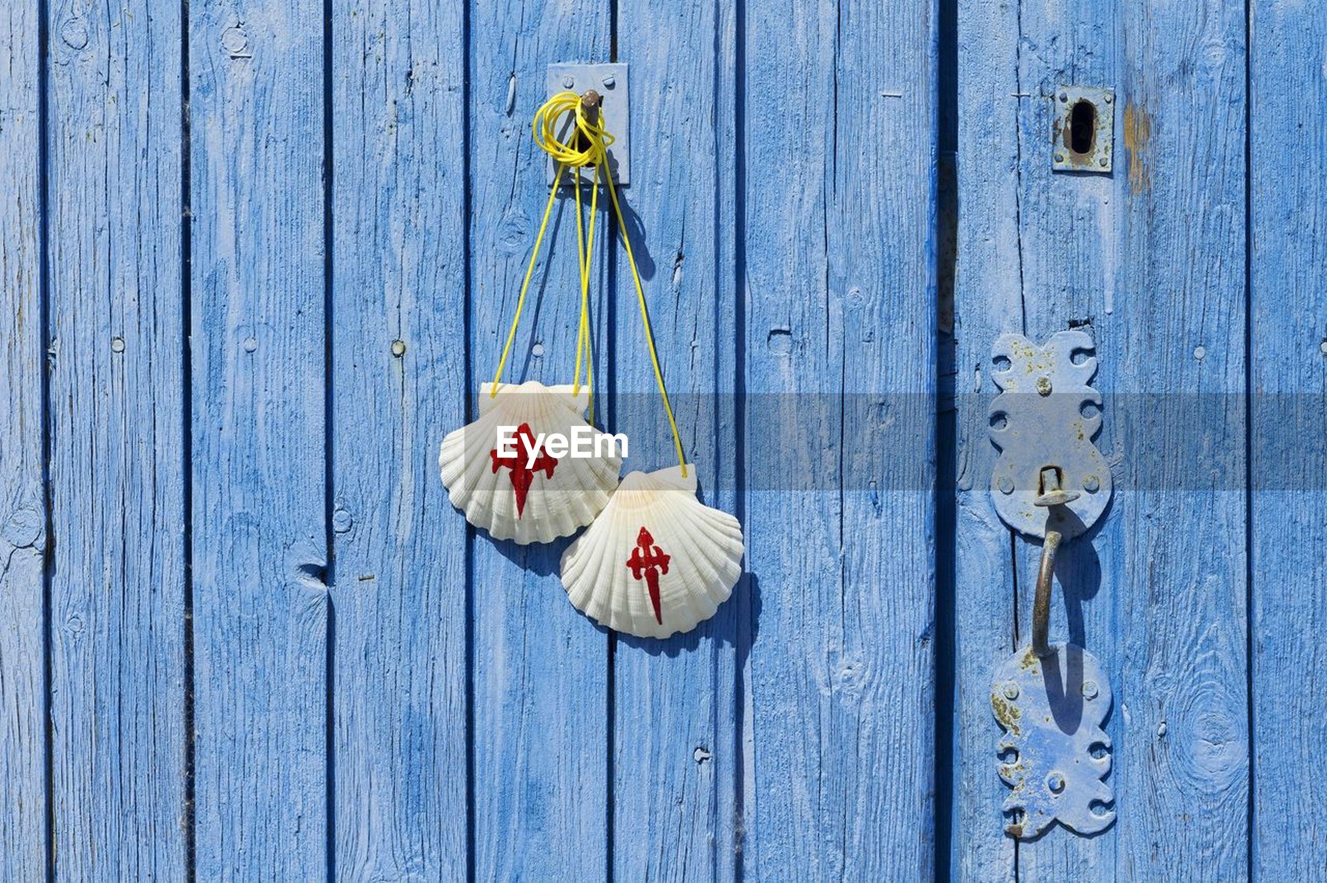 Pilgrim scallop shells on blue wooden door