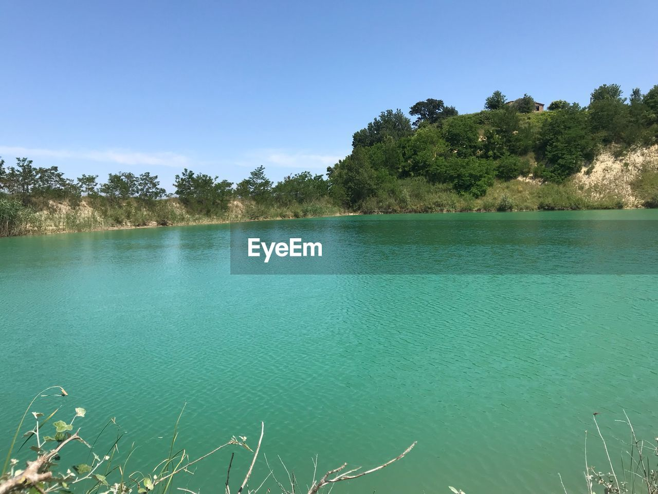 water, tree, plant, beauty in nature, tranquility, scenics - nature, tranquil scene, sky, lake, nature, day, no people, non-urban scene, blue, growth, land, idyllic, outdoors, clear sky, turquoise colored