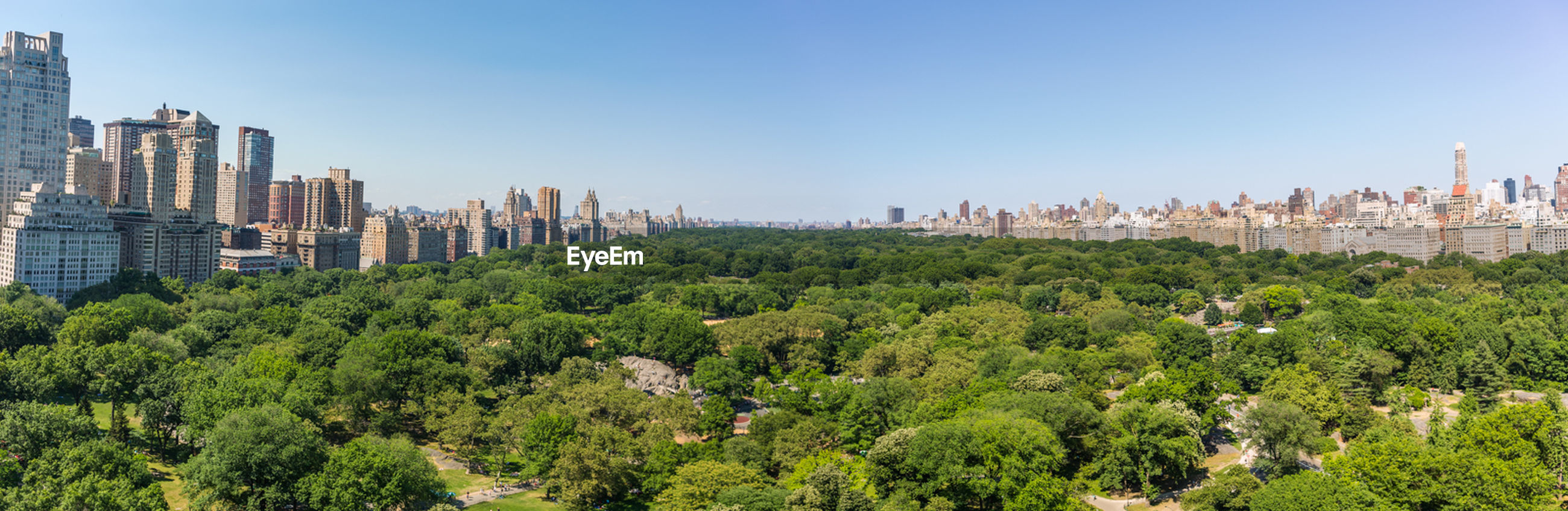 tree, city, architecture, building exterior, built structure, growth, panoramic, travel destinations, outdoors, no people, skyscraper, sky, nature, modern, day, urban skyline, cityscape