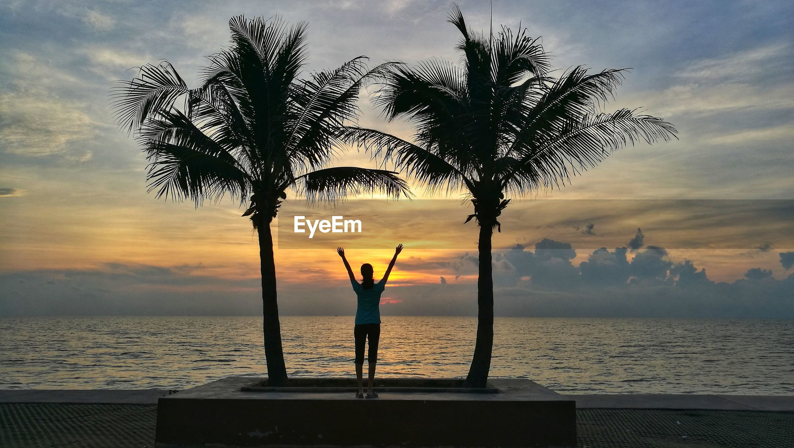 Rear view of girl standing by palm trees against sea and sky during sunset