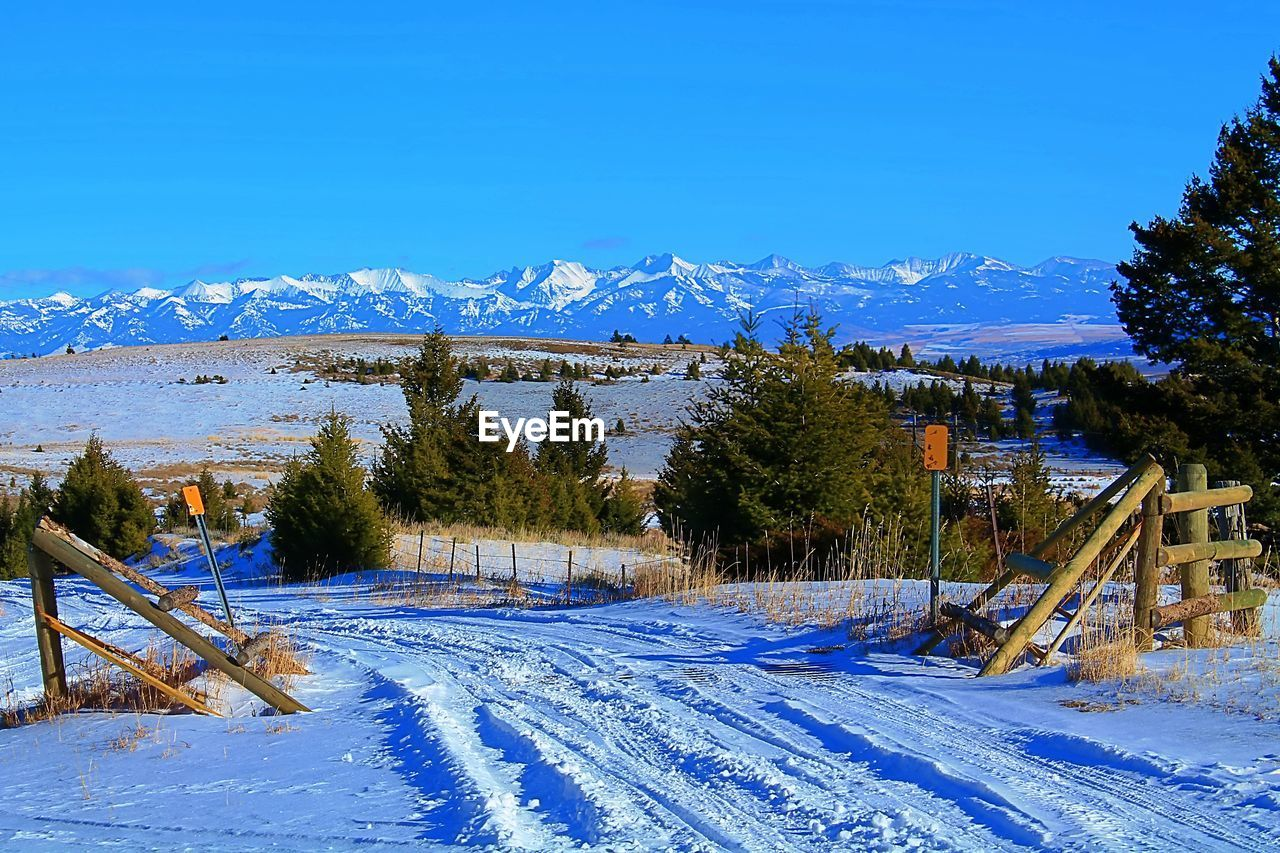 snow, cold temperature, winter, mountain, tree, beauty in nature, plant, scenics - nature, sky, blue, nature, mountain range, covering, land, tranquil scene, snowcapped mountain, white color, tranquility, field, no people, outdoors