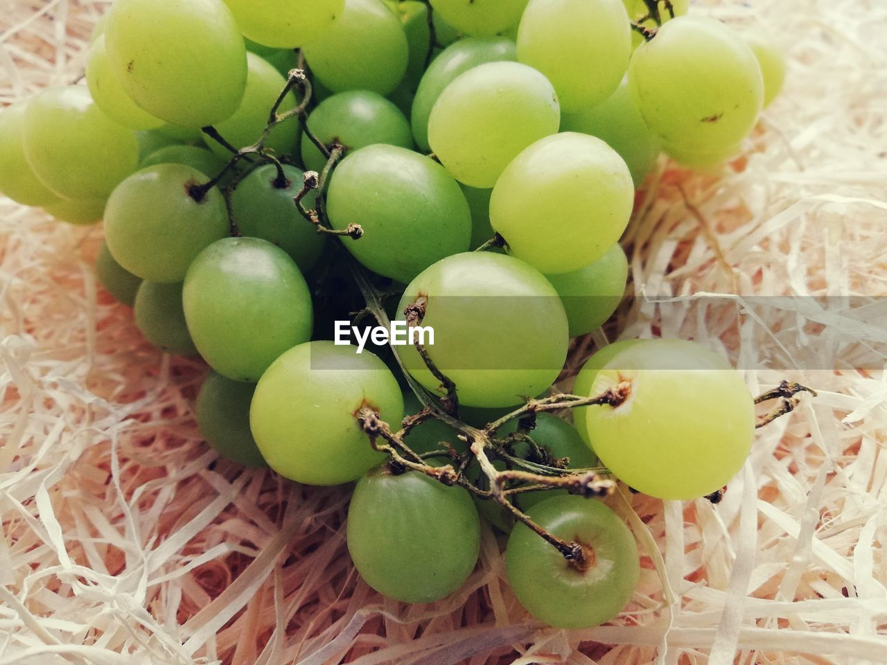 food, food and drink, healthy eating, fruit, wellbeing, freshness, green color, no people, close-up, still life, grape, plant, day, selective focus, raw food, nature, organic, outdoors, bunch