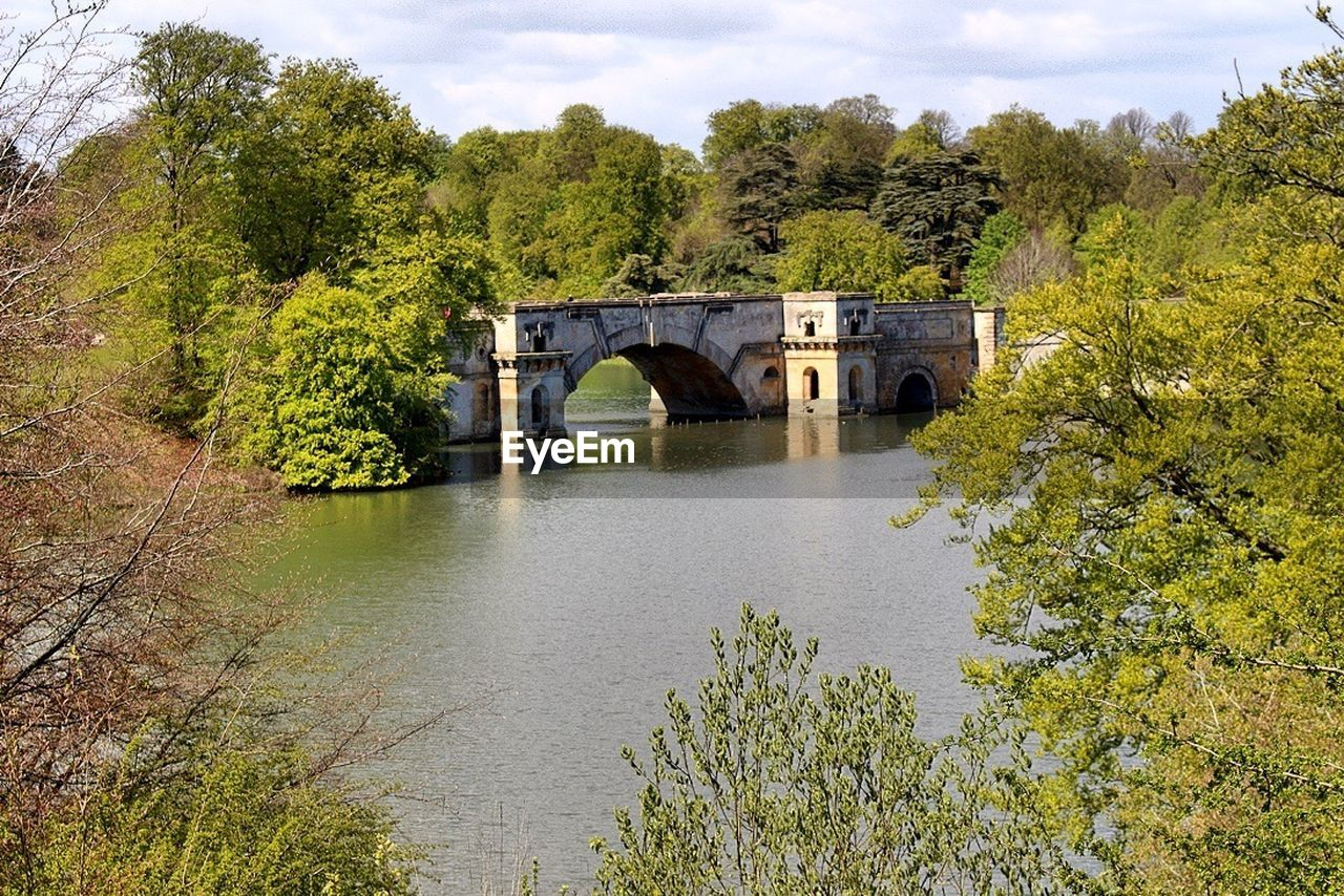 bridge, bridge - man made structure, tree, plant, architecture, built structure, water, arch, connection, nature, growth, no people, river, green color, tranquility, transportation, beauty in nature, forest, arch bridge, outdoors, arched