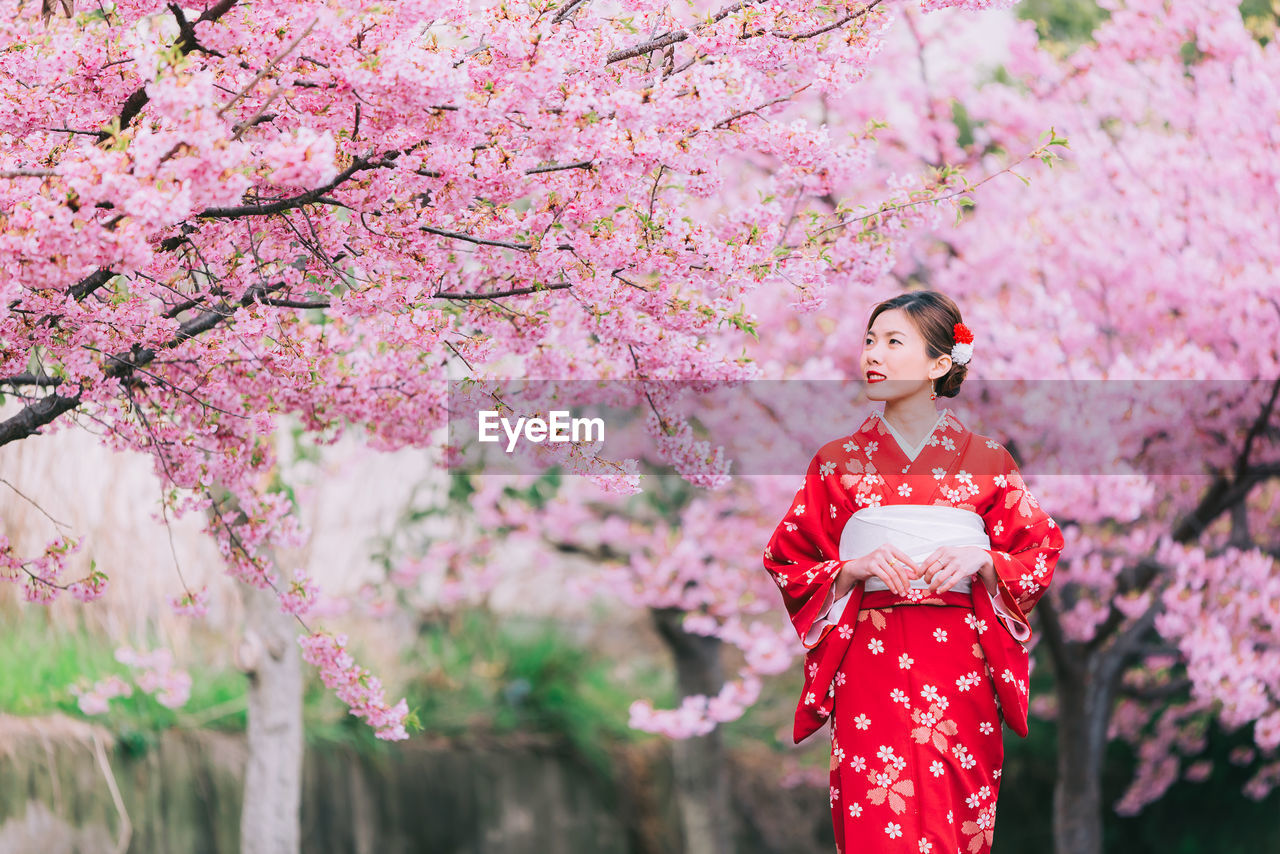 flower, flowering plant, pink color, plant, growth, one person, tree, women, young adult, young women, springtime, blossom, nature, adult, cherry blossom, freshness, real people, fragility, beauty in nature, cherry tree, beautiful woman, outdoors