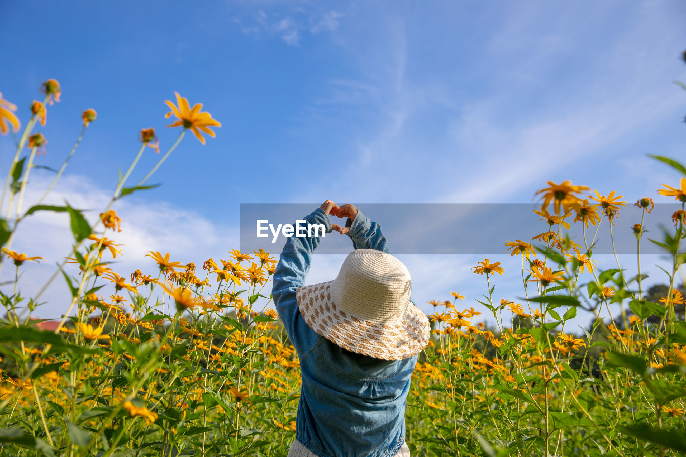 Rear view of girl making heart shape with hands while standing by flowering plants against sky