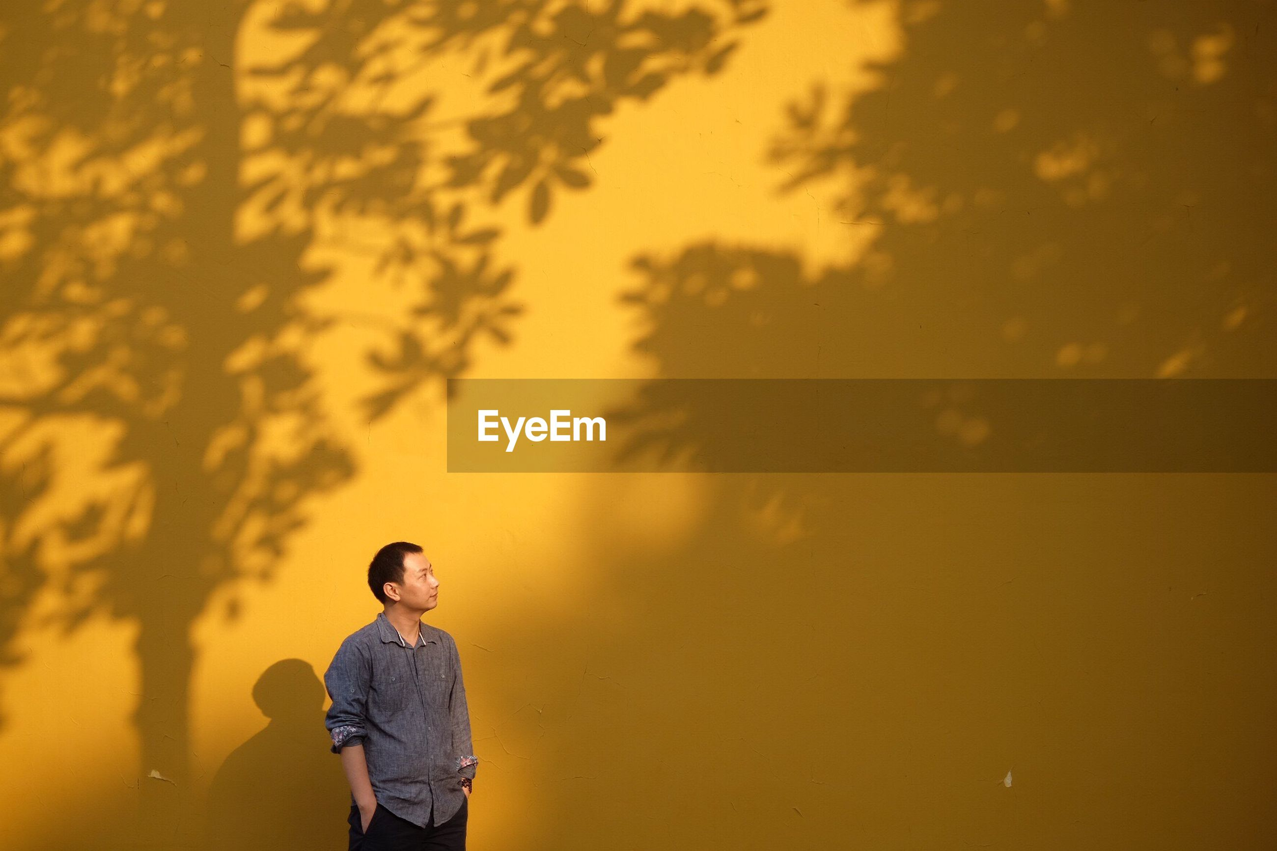 Mid adult man looking away while standing by yellow wall