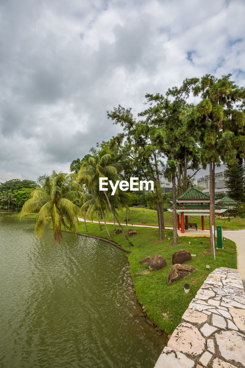 plant, water, sky, tree, cloud - sky, nature, grass, beauty in nature, day, no people, growth, architecture, built structure, tranquility, green color, scenics - nature, palm tree, tranquil scene, outdoors