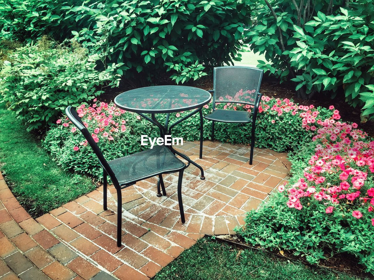 EMPTY CHAIR AND TABLE IN YARD