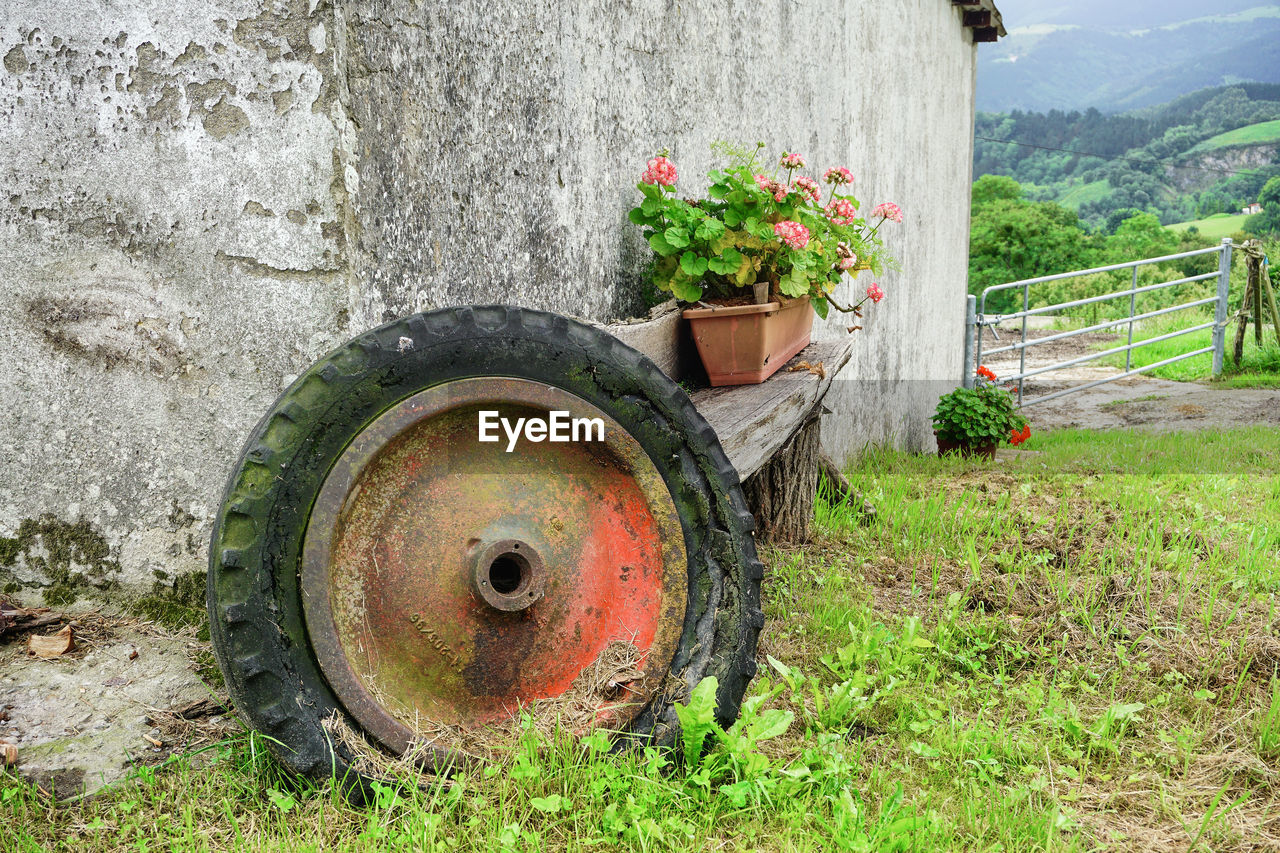 VIEW OF OLD RUSTY FLOWER POT