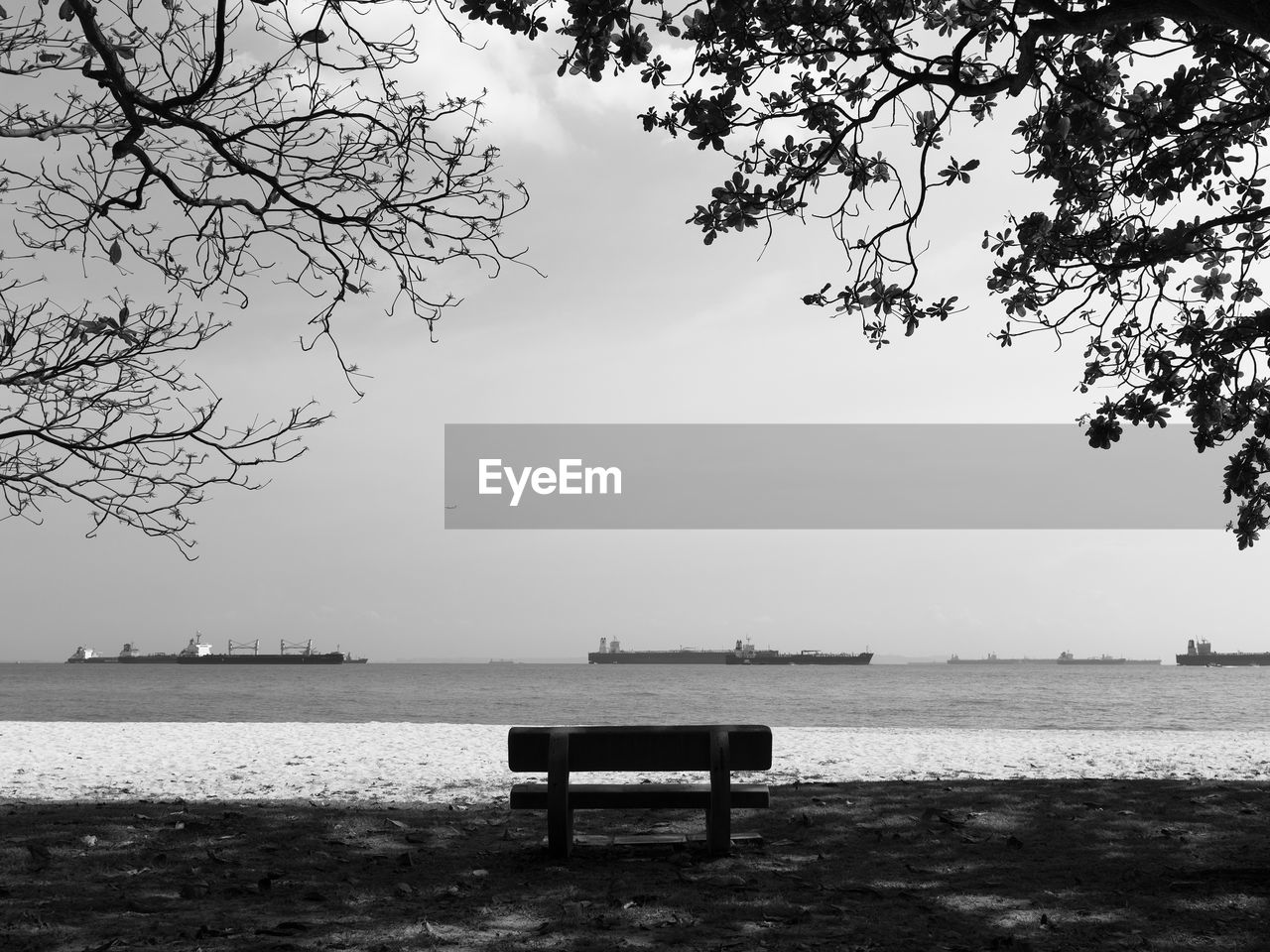 water, seat, sky, bench, tree, tranquility, beauty in nature, nature, tranquil scene, plant, scenics - nature, empty, day, absence, beach, park bench, no people, outdoors, land