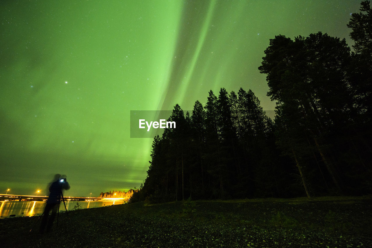 tree, plant, sky, night, scenics - nature, nature, beauty in nature, space, tranquil scene, silhouette, star - space, astronomy, tranquility, illuminated, one person, green color, land, real people, outdoors