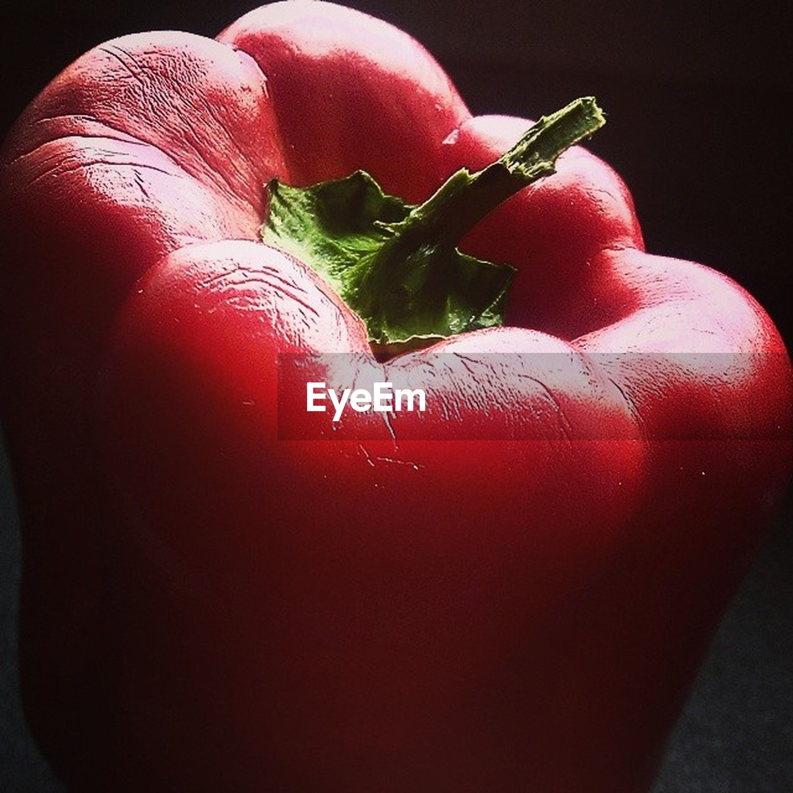 red, freshness, close-up, still life, black background, stem, no people, part of, growth, green color, focus on foreground