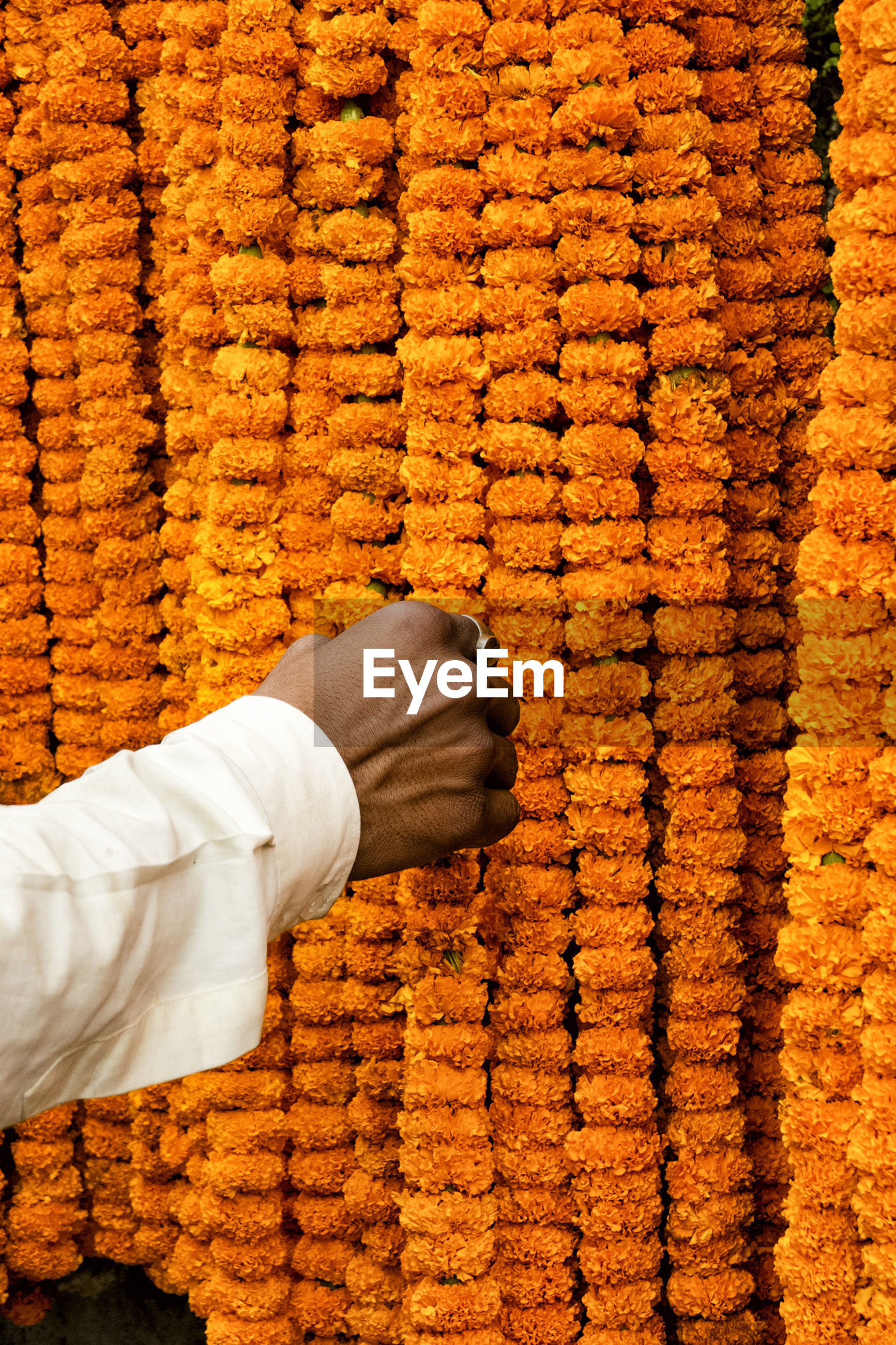 Cropped image of hand touching marigold garlands at market