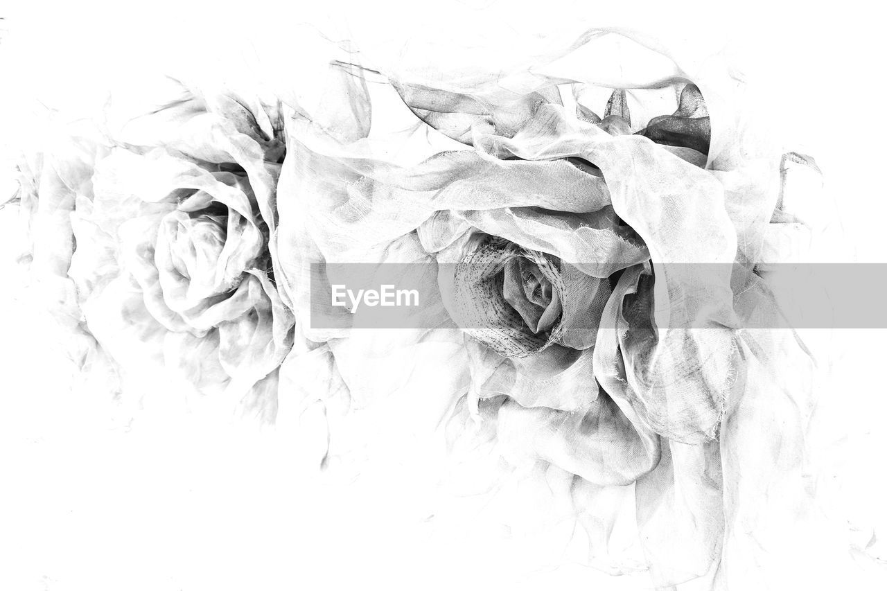 crumpled, crumpled paper, no people, close-up, indoors, day