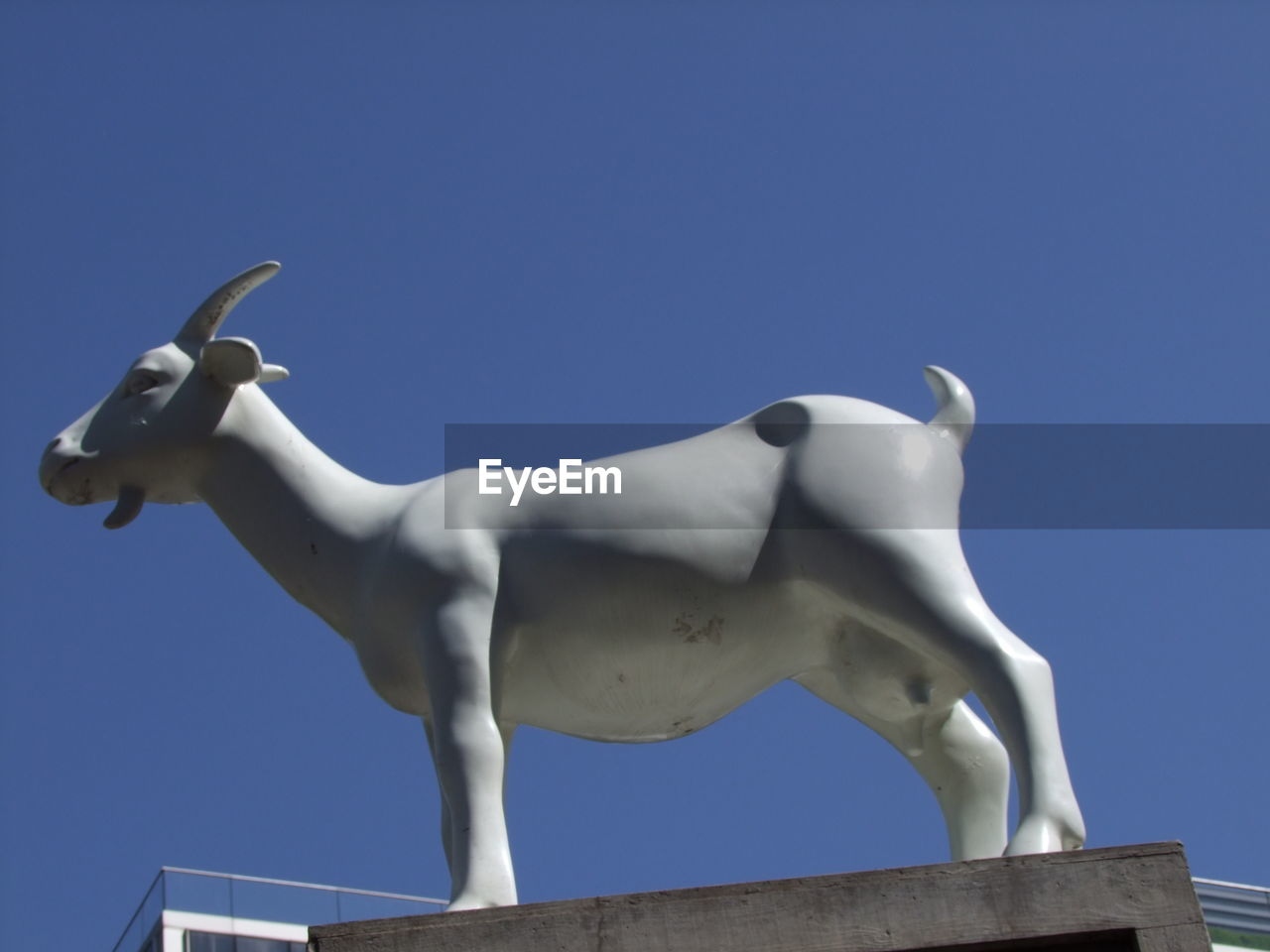 sky, representation, low angle view, no people, art and craft, animal representation, sculpture, mammal, nature, statue, livestock, animal, clear sky, blue, animal themes, copy space, animal wildlife, architecture, horse, domestic animals