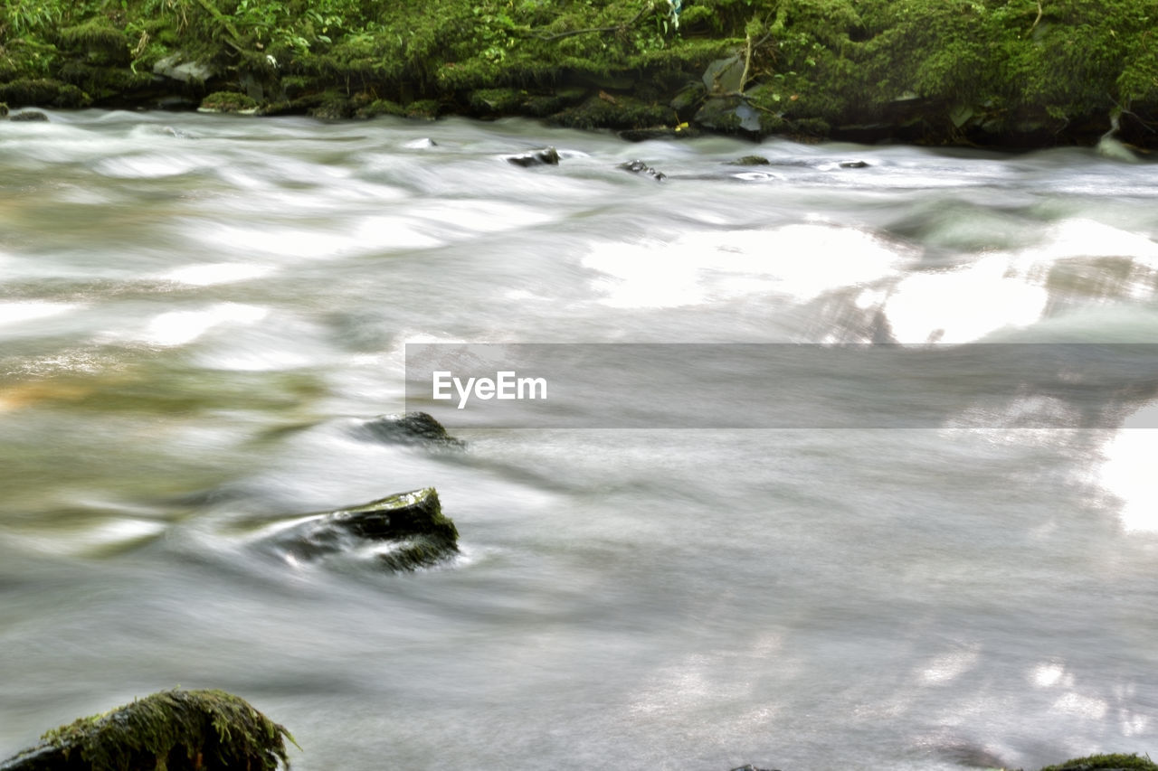 water, nature, no people, motion, day, outdoors, beauty in nature, tree