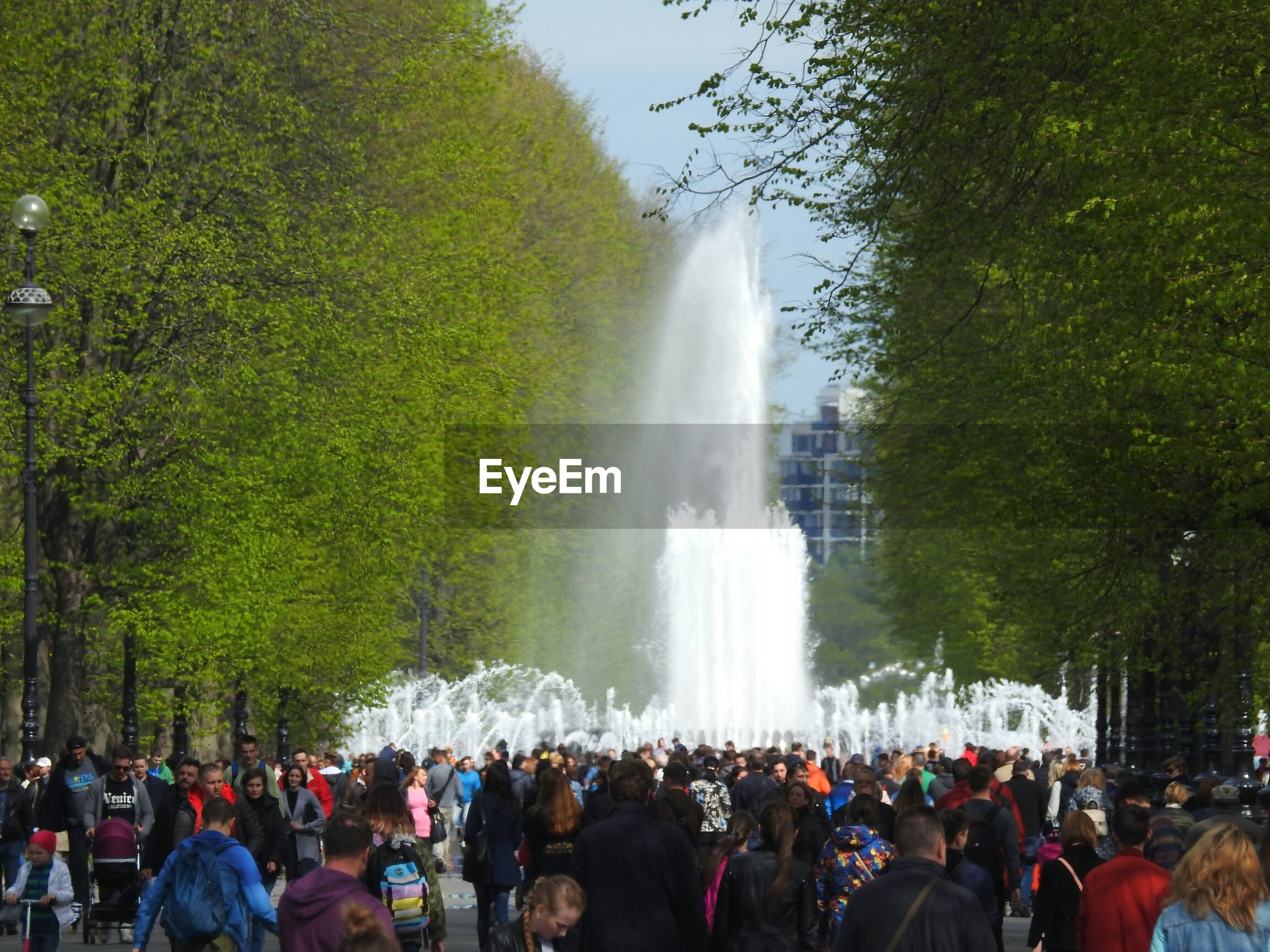 People against fountains amidst trees at park