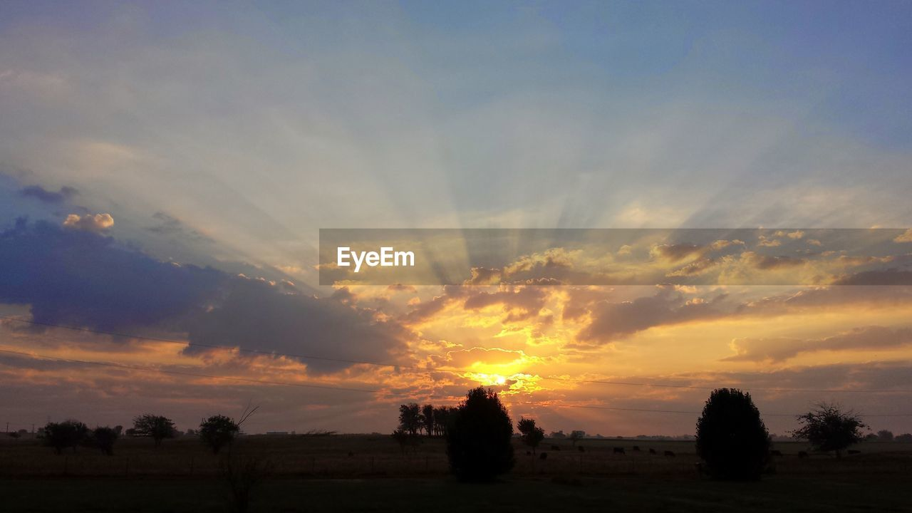 sunset, sky, cloud - sky, scenics - nature, beauty in nature, tranquil scene, orange color, tranquility, silhouette, landscape, no people, nature, tree, environment, plant, non-urban scene, idyllic, field, land, outdoors